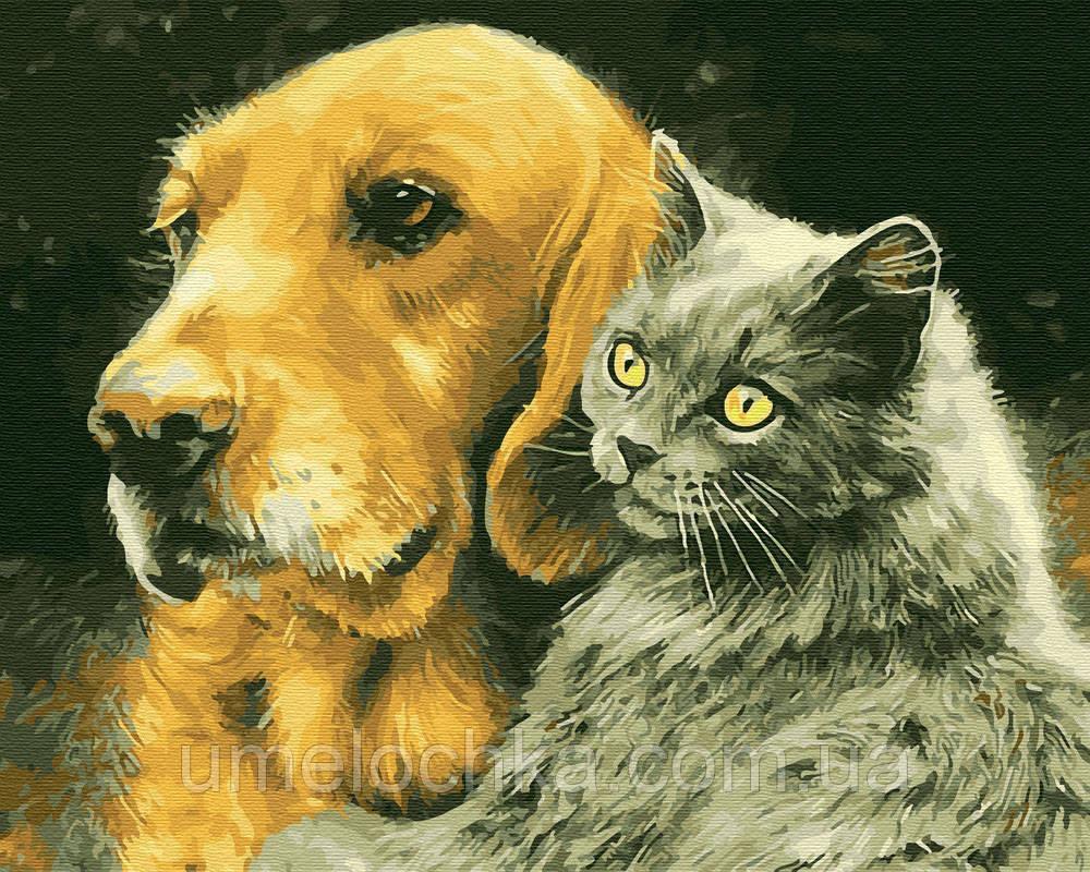 Картина по номерам Кот и пес (BK-GX28848) 40 х 50 см (Без коробки)