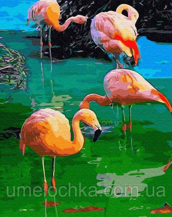 Картина по номерам  Фламинго (BK-GX33292) 40 х 50 см (Без коробки)