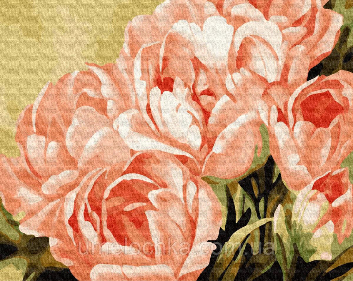 Картина по номерам Розовые розы (BK-GX7268) 40 х 50 см (Без коробки)