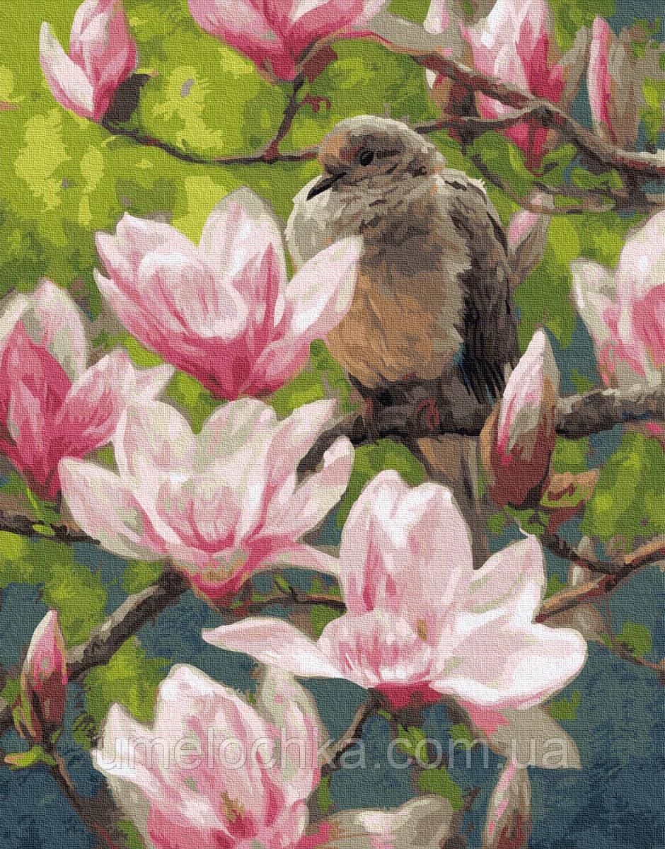 Картина по номерам Птицы и цветы (BRM24986) 40 х 50 см