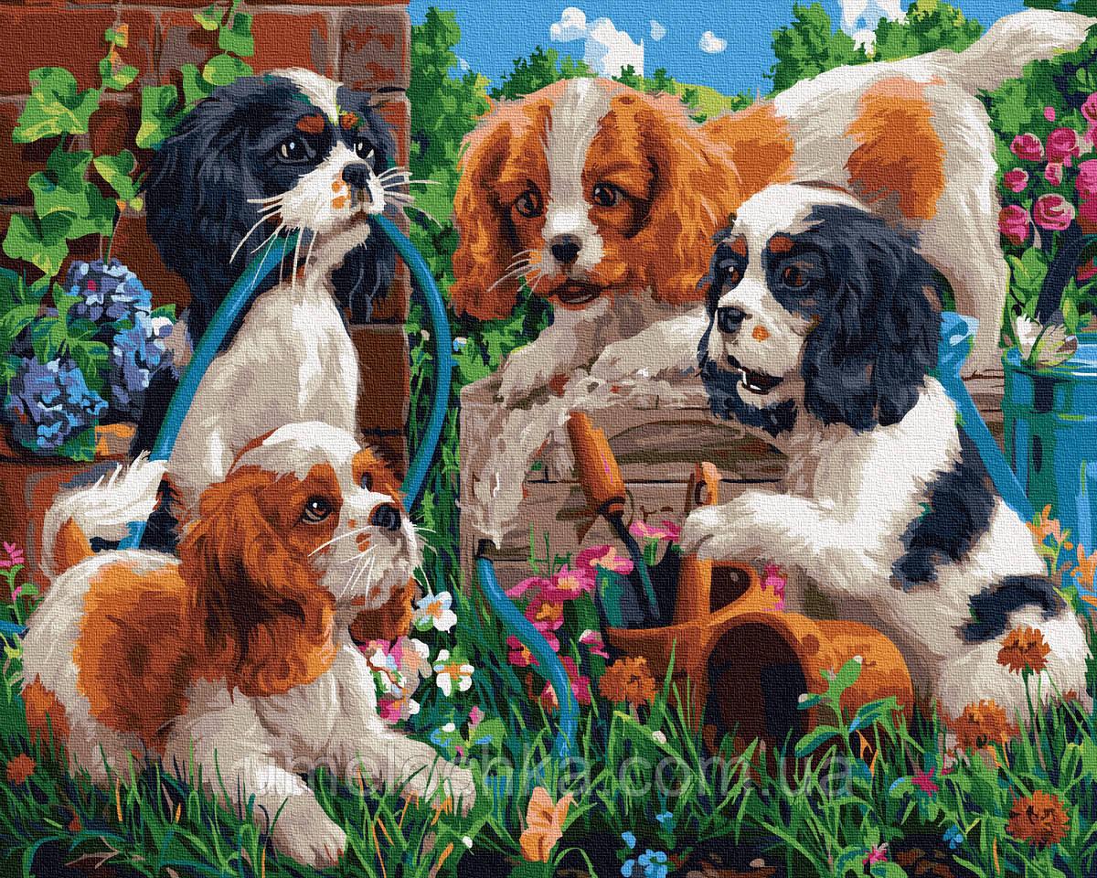 Картина по номерам  Щенки в саду (BRM35651) 40 х 50 см
