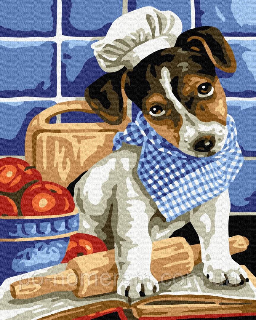 Картина по номерам BrushMe Собачка поварёнок (BK-GX26539) 40 х 50 см (Без коробки)