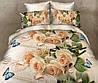 Двуспальный комплект постельного белья 180х220 Ранфорс_хлопок 100% (13983)