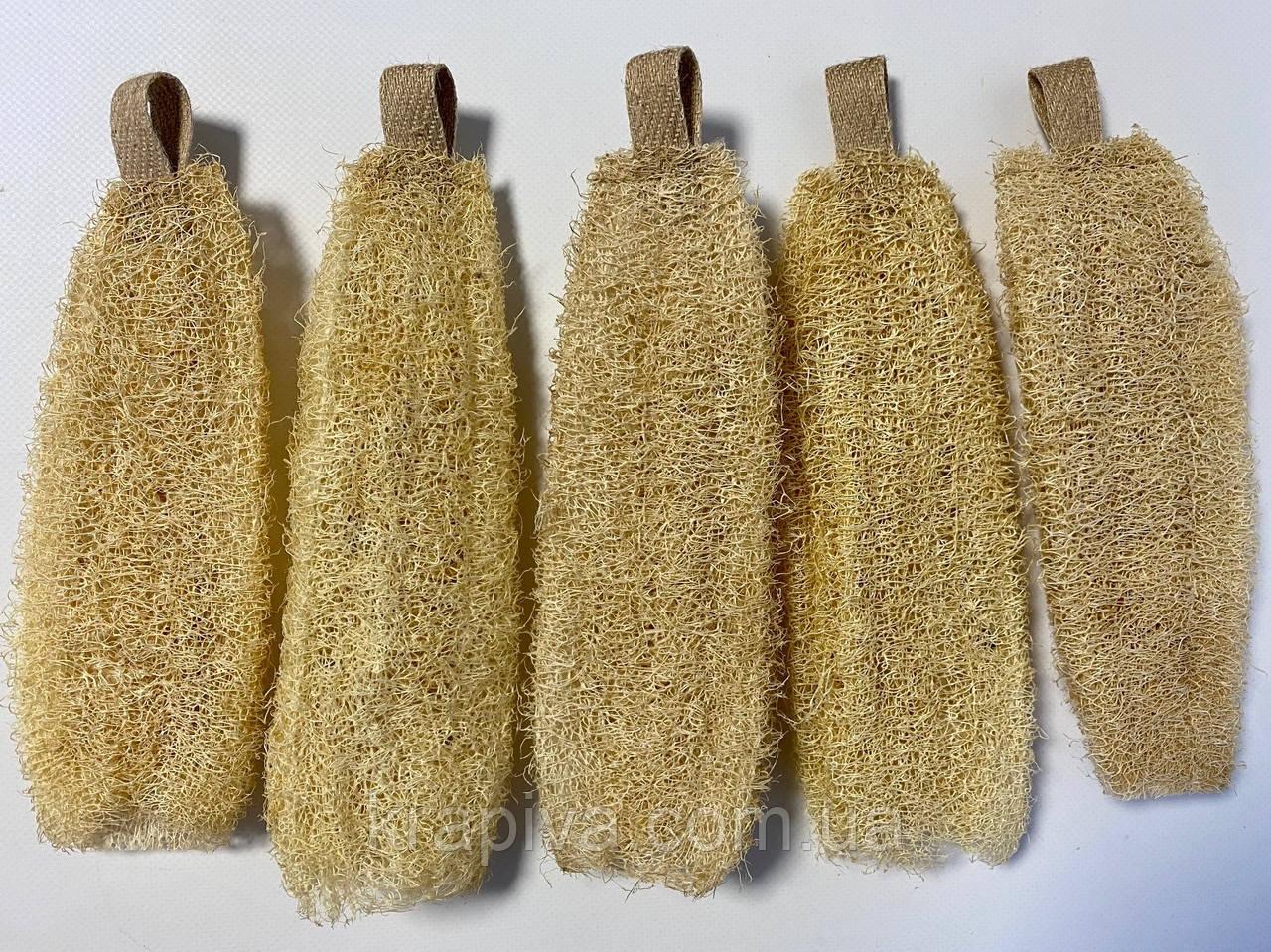 Люфа 20 см, мочалка натуральная, экологичная губка, мочалка з люфи натуральна органічна, екологічна