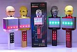 Мощный, стильный Караоке микрофон WSTER WS-1828 c LED подсветкой, фото 9