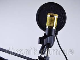 Конденсаторный микрофон M-800 PRO-MIC студийный микрофон для звукозаписи