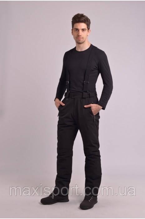 Мужские лыжные брюки (70397/1)