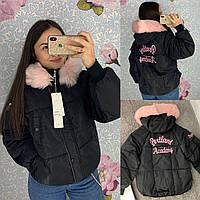 Жіноча коротка куртка парку Portland Academy чорна, фото 1