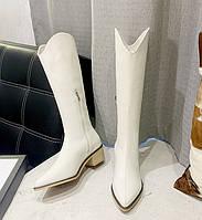Женские сапоги казаки. Модель 32147, фото 2