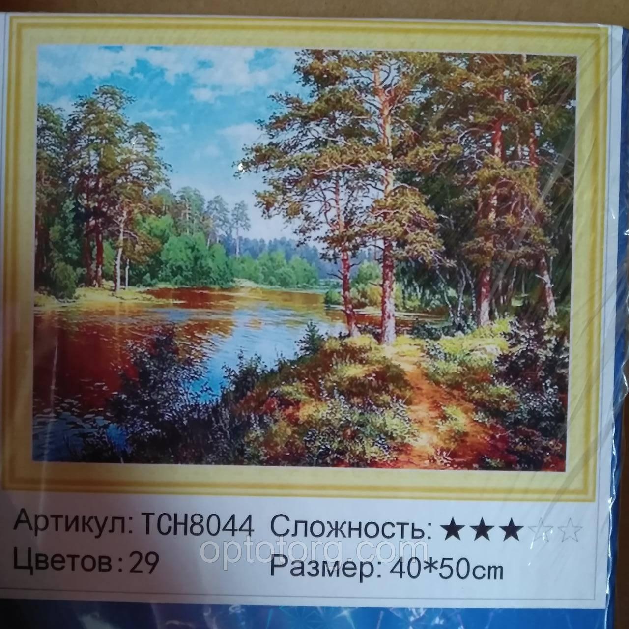 Алмазная мозаика картина по номерам камнями  размер 50*40