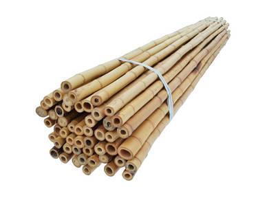 Бамбуковая опора - 3,05 м, d - 18-20 мм