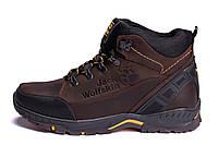 Мужские зимние кожаные ботинки Jack Wolfskin Chocolate (реплика)