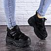 Кроссовки женские черные Cujo 2121 (36 размер), фото 2