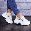Женские бежевые кроссовки Braxton 1742 (39 размер), фото 6