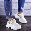 Женские бежевые кроссовки Braxton 1742 (39 размер), фото 8