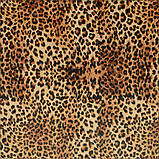 Ткань для мебели велюр принт Леопард, фото 3