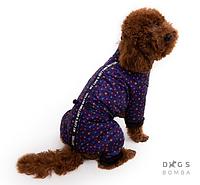 Зимний комбинезон змейка nice звезды фиолетовый для собак DogsBomba