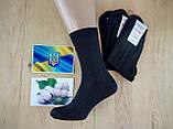 Носки мужские ,демисезонные Житомир Нік, 29р. ( 100 % хлопок ) Украина, фото 2