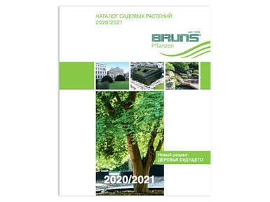Каталог Брунс 2020-2021