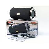 Xtreme Golon Atlanfa RX-1888bt 20W, bluetooth колонка с FM и MP3, черная, фото 8