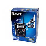 Радиоприемник GOLON RX-9133 Коричневый, фото 5