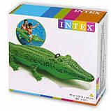 """Плотик Intex 58546 NP """"Крокодил"""" размером 168х86см, от 3-х лет, фото 2"""