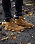 Ботинки мужские зимние с мехом Тимбо| ботинки теплые рыжие. Живое фото, фото 4