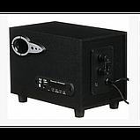 Колонки компьютерные SW-303U 220V Черные, фото 3