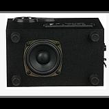 Колонки компьютерные SW-303U 220V Черные, фото 4