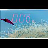 Электронные напольные весы Domotec MS-2019 до 180 кг с ЖК дисплеем С ОДУВАНЧИКОМ, фото 2