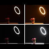 Кольцевая LED лампа 20 см селфи кольцо для блогера, фото 4
