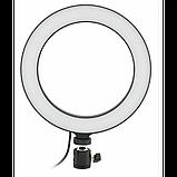 Кольцевая LED лампа 16 см селфи кольцо для блогера СО ШТАТИВОМ, фото 2