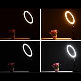 Кольцевая LED лампа 16 см селфи кольцо для блогера СО ШТАТИВОМ, фото 5
