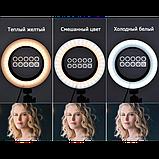 Кольцевая LED лампа 16 см селфи кольцо для блогера СО ШТАТИВОМ, фото 6