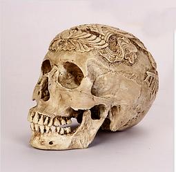 Череп з Буддистської похоронної символікою