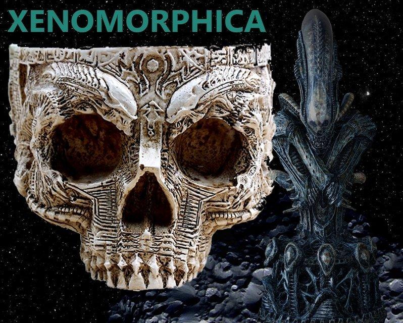 Чаша Xenomorphica