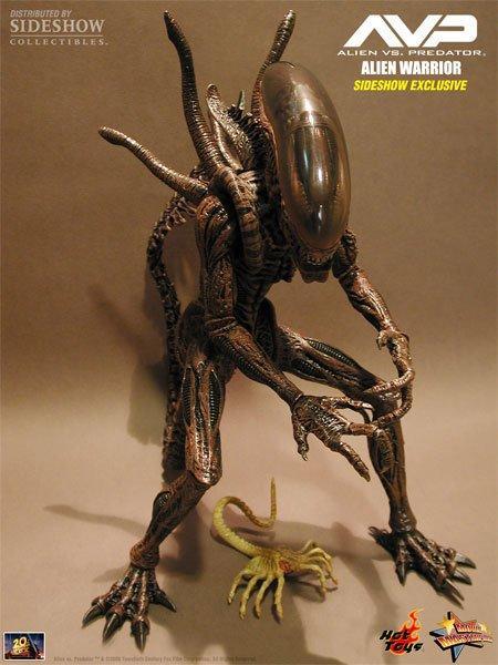 Alien-Hunter-AVP (Hot Toys) 1:6