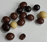Шоколадне драже горіх, кава,апельсин,родзинки , нут Bim birlesik Hazine, 230 гр., фото 5
