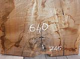 Слэб американского ореха, фото 4