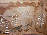 Слэб американского ореха, фото 5