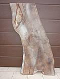 Слэб американского ореха, фото 2