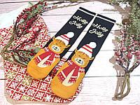 🎄 Новогодние черные носки с котиками HOLLY JOLLY 36-41 размер LEONORA, фото 1
