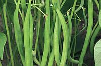 Семена фасоли спаржевой Серенгети 100000 семян