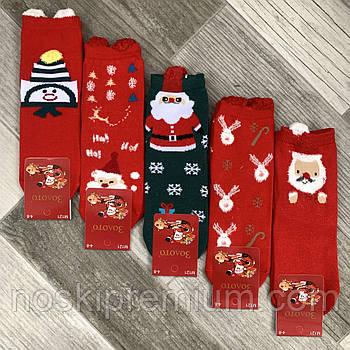 Носки детские демисезонные хлопок Новый год Золото, на 4-8 года, ассорти, М121