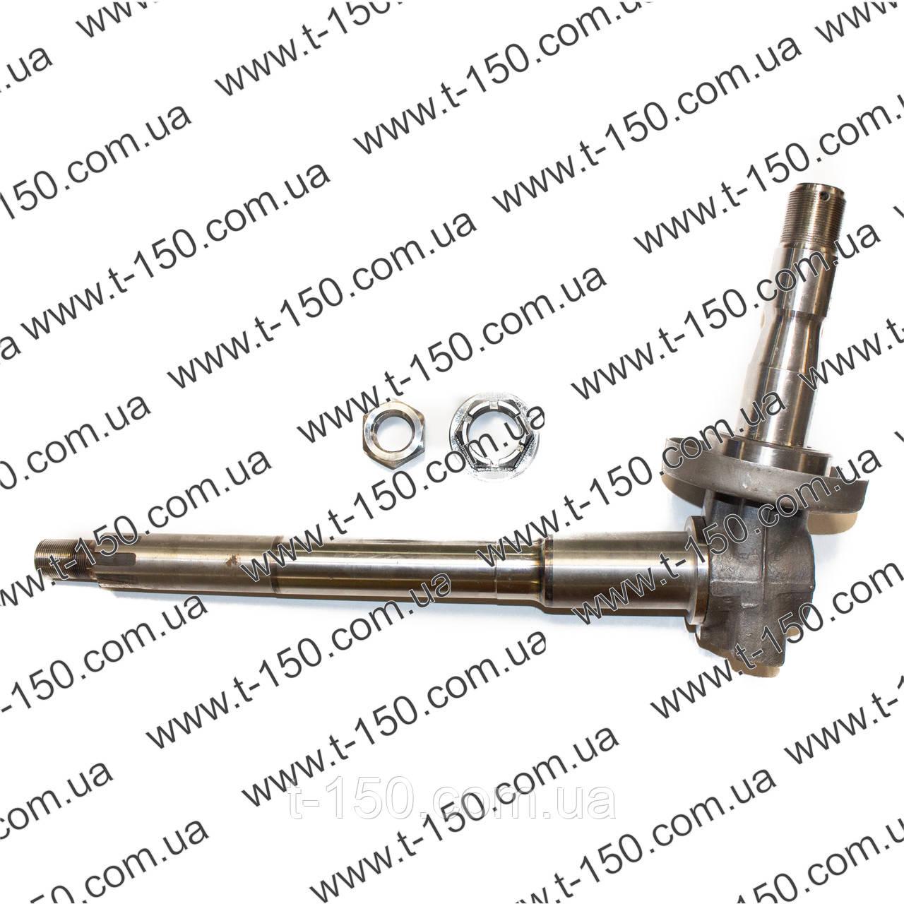 Цапфа поворотная правая МТЗ-80 нового образца (70-3001085-01)