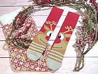🎄 Разные новогодние красные носки с оленем 36-41 размер LEONORA, фото 1