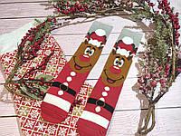 🎄 Парные красно-серые новогодние носки с Дедом Морозом 36-41 размер LEONORA, фото 1