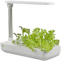 Гидропонное выращивание растений / проращиватель Vegebox BioChef Table Box, фото 1
