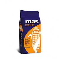 Семена кукурузы Амелиор ФАО 240