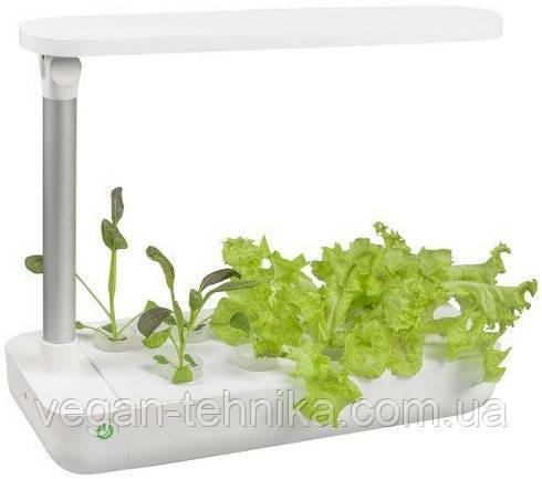 Гидропонное выращивание растений / проращиватель Vegebox BioChef Table Box